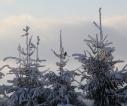 poczatek_zimy_2017_sanok_14