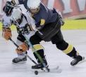 wybrane-sanok-hokej-festival-2011_050