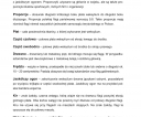 miniprzewodnik_bialo_czerwona-11