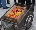 jablka_za_darmo_29