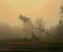 w-jesiennej-mgle-grzegorz-gaczynski
