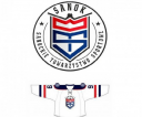 logo-sts-1
