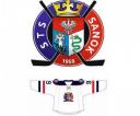 logo-sts-2