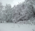 zima-luty2013-015