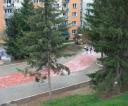 foto22