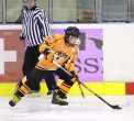sanok-hokej-festiwal-20120825_007
