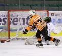 sanok-hokej-festiwal-20120825_031