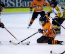 sanok-hokej-festiwal-20120826_020