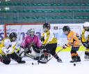 sanok-hokej-festiwal-20120826_037