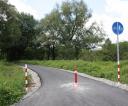 droga-obok-sosenek-1