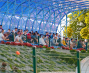 Fot.-Tomasz-SowaIMG_9392