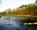 wiosna-radosna1