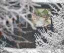 2017.11.18 Polana/Bieszczady. W Bieszczadzkich dolinach i wysoko w gorach od poznych nocnych pada snieg. Na drogi wyjechaly piaskarki. Fot. Wojciech Zatwarnicki/REPORTER