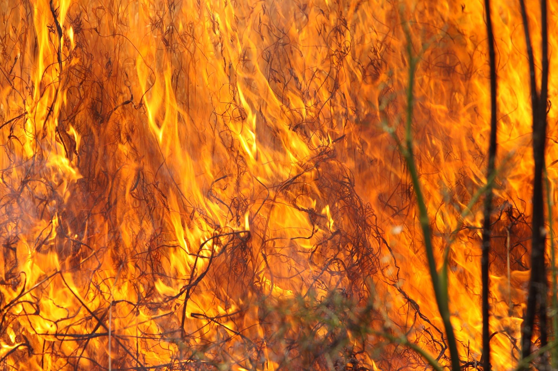 burning-grass-1165823_1920