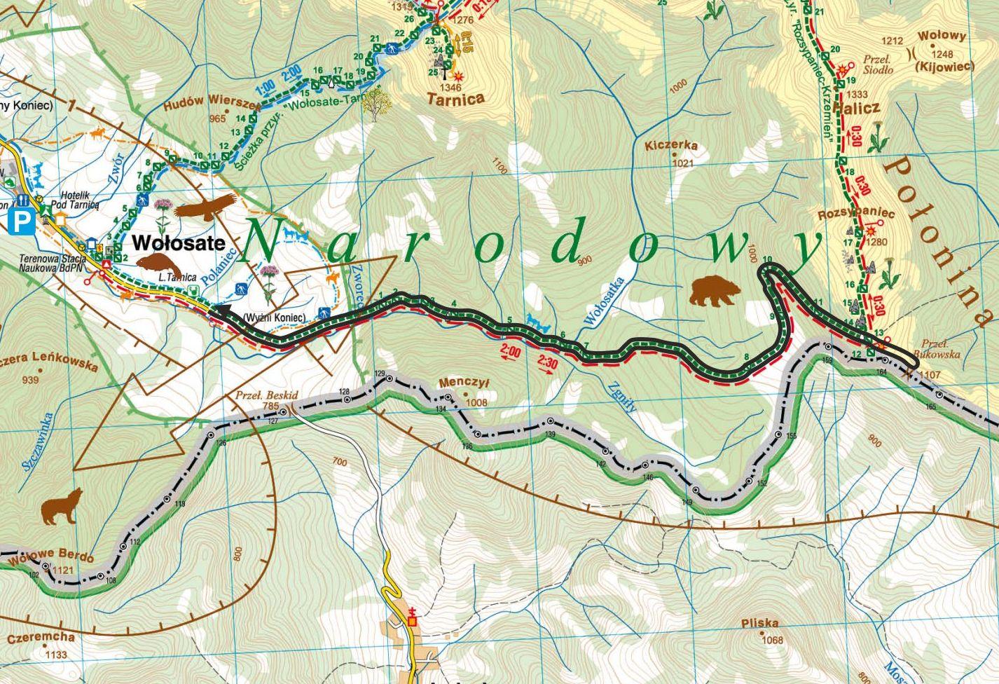 Szlak Wołosate-Przełęcz Bukowska