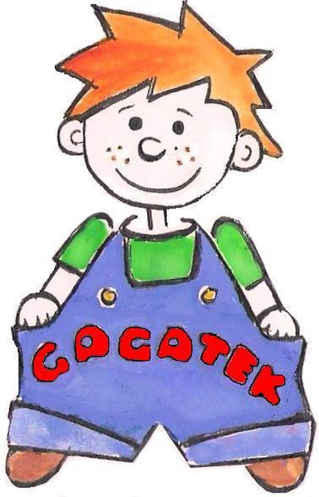 gagatek 2010 b