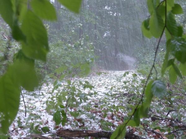 hail-123042_1920