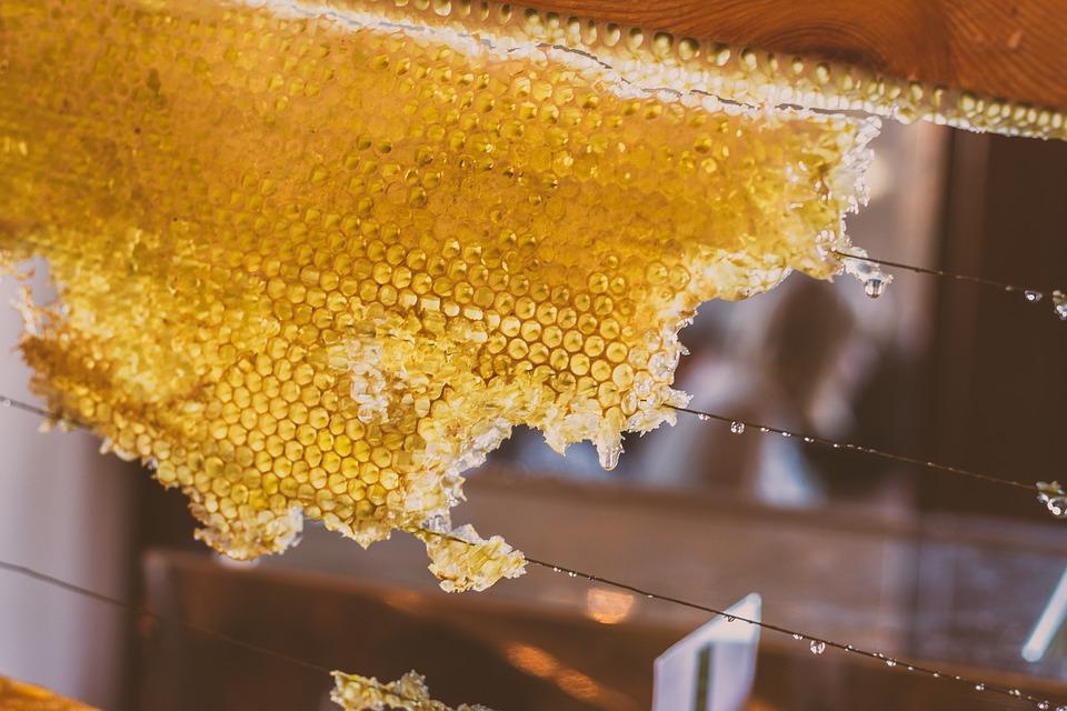 honey-2595679_960_720