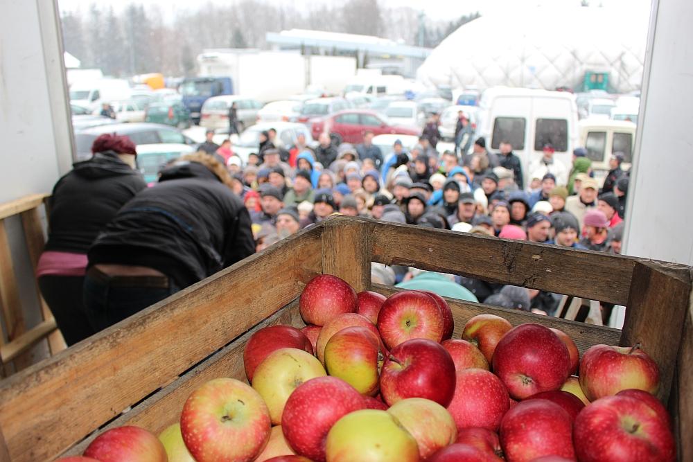jablka_za_darmo_19