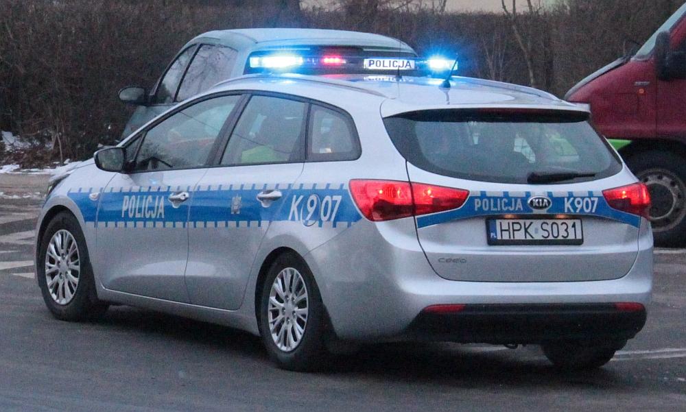 policja113
