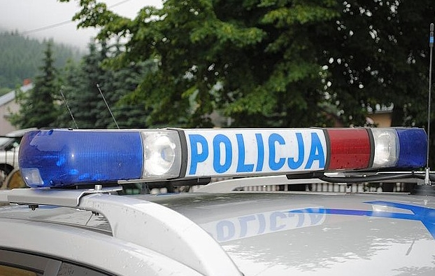 policja81