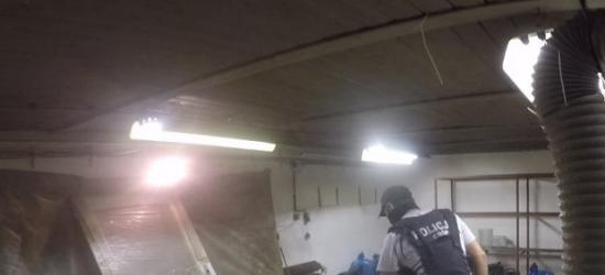 AKTUALIZACJA: Kierowca ciężarówki wszedł wprost pod nadjeżdżający autobus