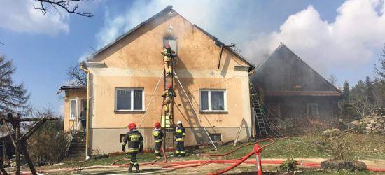 Pożar zamieszkałego domu. Akcja pięciu zastępów straży pożarnej (ZDJĘCIA)
