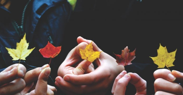 Sucha skóra dłoni – jak ją pielęgnować i chronić?