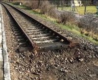 Na dobry początek 3 mln zł. Linia 107 odżywa (FILM)