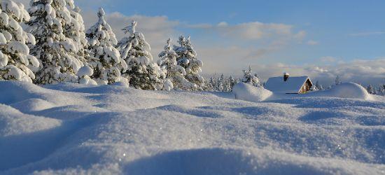 """Czy do Polski dotrze """"Bestia ze wschodu""""? Śnieg i mróz do -30 stopni C"""