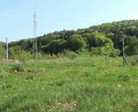 Działki przy Stróżowskiej zostaną uzbrojone pod budownictwo. Powstanie zakładu karnego to jedna z opcji (FILM)
