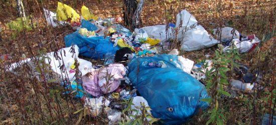 Do lasu po drzewko. W zamian sterta śmieci? (ZDJĘCIA)