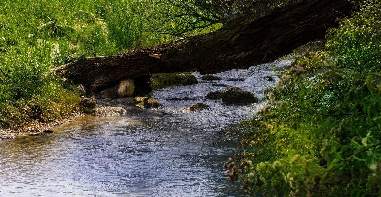 KOSTAROWCE. 42-latek znaleziony w potoku. Był reanimowany