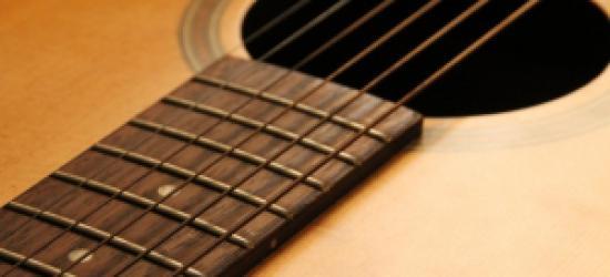 LOP zaprasza miłośników muzyki i ekologii do udziału w Przeglądzie Piosenki Ekologicznej