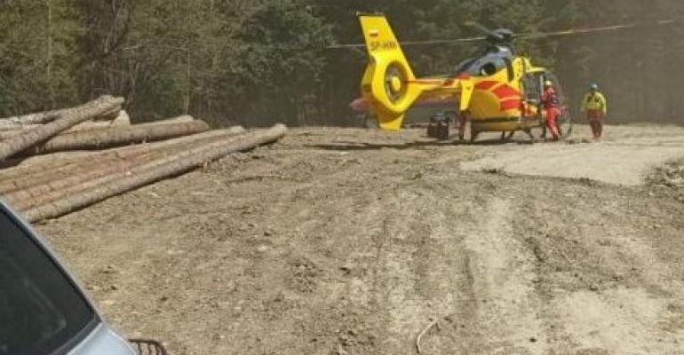 BIESZCZADY: Wypadek przy wycince. Drzewo przygniotło mężczyznę