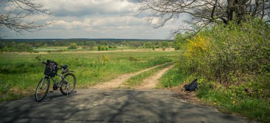 """INTERWENCJA: Rowerzysta może skorzystać z chodnika? """"W Sanoku trudno o ścieżki dla jednośladów"""""""