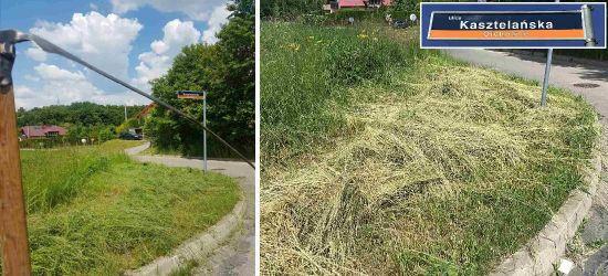 SANOK. Z kosą na wysokie trawy przy skrzyżowaniu (ZDJĘCIA)