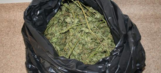 Policjanci zabezpieczyli ponad 7 kg narkotyków (ZDJĘCIA)