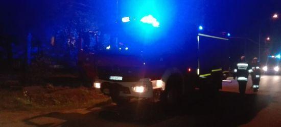 Pożar sadzy w domu jednorodzinnym. Strażacy w akcji (ZDJĘCIA)