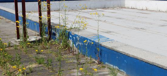 Basen odkryty w Sanoku to ruina! Na remont nie ma co liczyć (ZDJĘCIA)