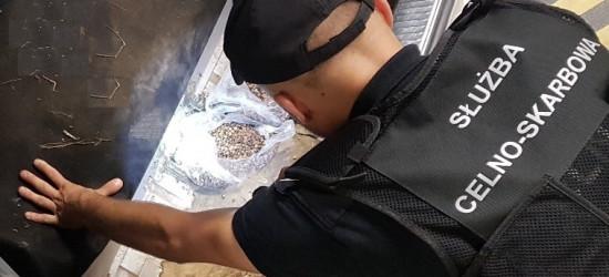 REGION: Seria wpadek przemytników bursztynu (FOTO)