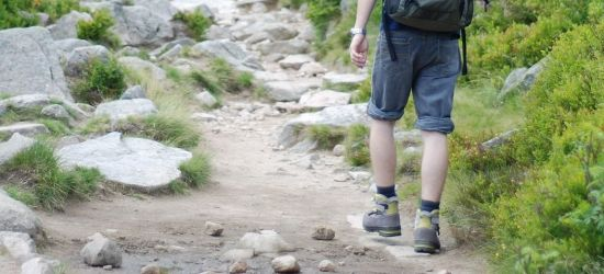 Kamień nad Rzepedzią – tam gdzie szumią stare buki…