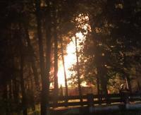 ZAGÓRZ: Pożar budynku gospodarczego. 6 zastępów straży w akcji (ZDJĘCIA)