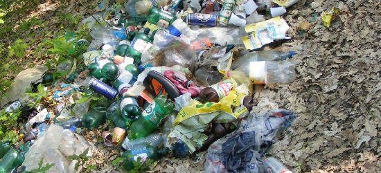 Ukarani za wyrzucanie śmieci do lasu (FOTO)