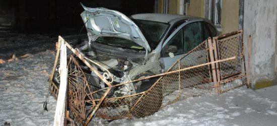 PODKARPACIE: Dwóch pijanych kierowało jednym samochodem. 17-latek staranował ogrodzenie