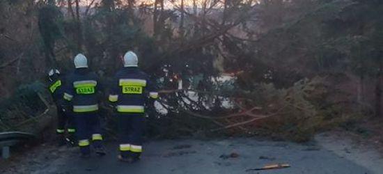 POWIAT SANOCKI: Pozrywane dachy, powalone drzewa. 30 interwencji strażaków (ZDJĘCIA)