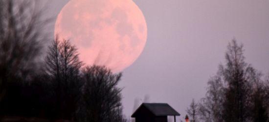 Najjaśniejsza pełnia tego roku. Księżyc różowy! (ZDJĘCIA)