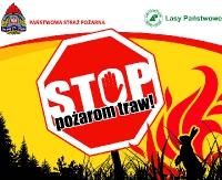 Wypalanie traw zagraża lasom!