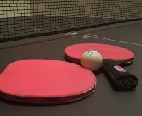 SANOK: Amatorskie mistrzostwa tenisa stołowego