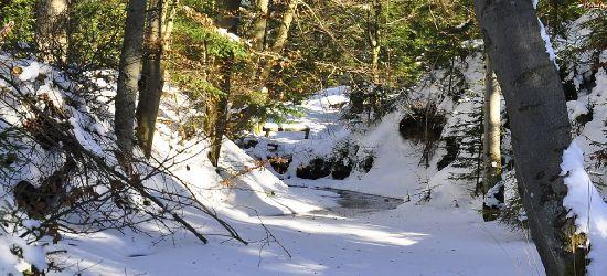 Wychłodzona 31-letnia turystka znaleziona w potoku. Schodziła z Tarnicy (ZDJĘCIA)